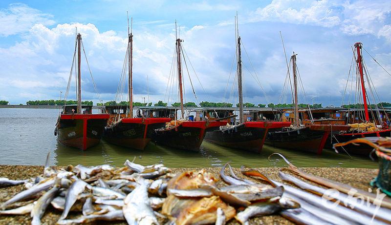 渔äoo码å¤′