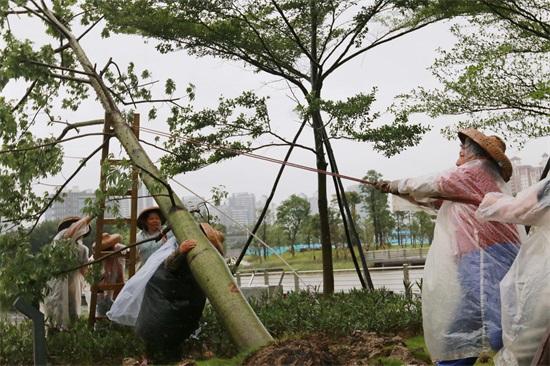 南沙众志成城防御台风 -