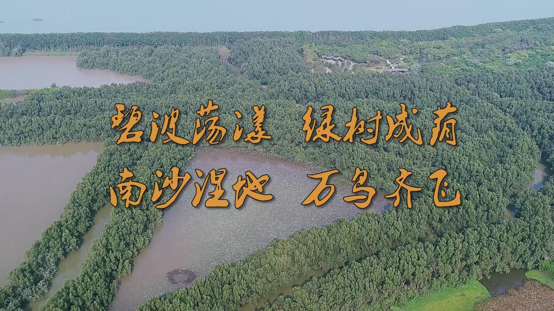 【视频】空中看南...