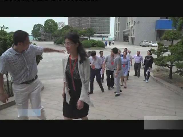 区政协调研龙穴街