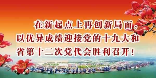 南沙学习贯彻习近平总书记关于广东工作重要批示精神 -